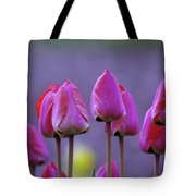 Tullips  Tote Bag