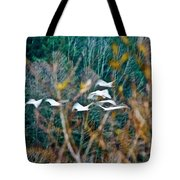 Tundra Swans Tote Bag