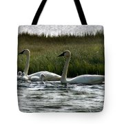 Tundra Swans And Cygents Tote Bag