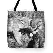 Tundra Wolf Pups Tote Bag