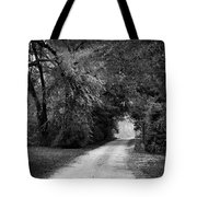 Tunnel Of Lydia Tote Bag