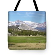 Tuolumne Meadows Tote Bag