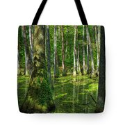 Tupelo Trees In Mississippi  Tote Bag