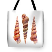 Turetella Shells Tote Bag