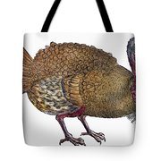 Turkey, 1560 Tote Bag