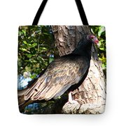 Turkey Buzzard Tote Bag