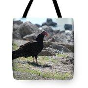 Turkey Buzzard  Tote Bag