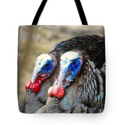 Turkey Prowl Closeup Tote Bag
