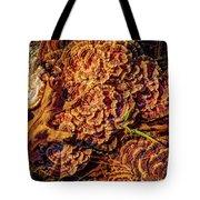 Turkey Tail Mushrooms  Tote Bag