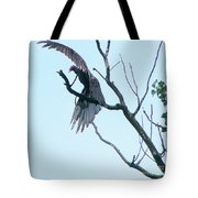 Turkey Vulture Drying Wings After Rain     Indiana Summer Tote Bag