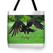 Turkey Vulture In Flight Tote Bag