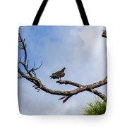 Turkey Vulture On Dead Tree Tote Bag