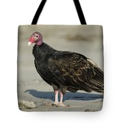 Turkey Vulture On The Beach Tote Bag