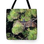 Turkey Vulture Spread Two Tote Bag