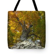 Turning Colors Tote Bag