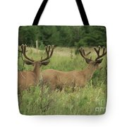 Turning Our Backs To You Tote Bag