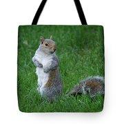 Turning Squirrel Tote Bag