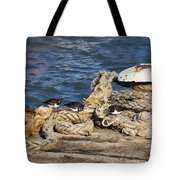 Turnstones At The Harbour Tote Bag