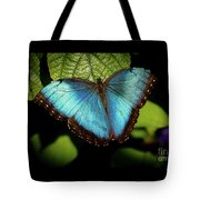 Turquoise Beauty Tote Bag