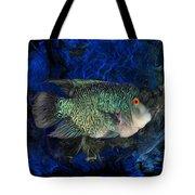 Turquoise Texas Cichlid  Tote Bag