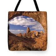 Turret Arch And North Window Tote Bag