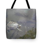 Turtle Amongst Fish Tote Bag
