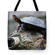 Turtle And The Hippo Tote Bag