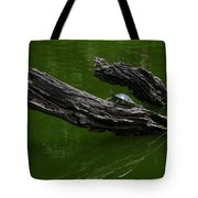 Turtle Art Tote Bag