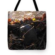 Turtle At Deer Creek Tote Bag