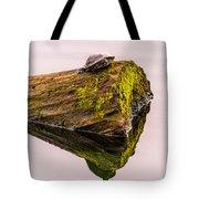 Turtle Basking Tote Bag