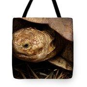 Turtle Closeup Tote Bag