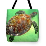 Turtle Day In Titusville,florida Tote Bag