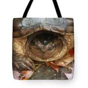 Turtle In Repose  Tote Bag