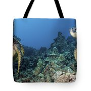 Turtle Panorama Tote Bag by Dave Fleetham - Printscapes