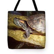 Turtle Reflections Tote Bag by Deleas Kilgore