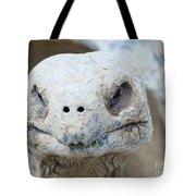 Turtle Smile  Tote Bag