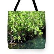 Turtle Swim Tote Bag