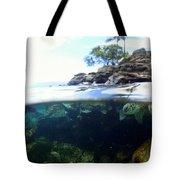 Turtle Tide Tote Bag