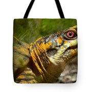 Turtle-turtle Tote Bag by Stephanie  Varner