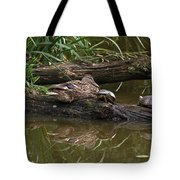 Turtles And A Duck Tote Bag