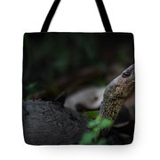 Turtle's Neck 1 Tote Bag