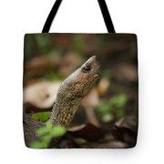 Turtle's Neck  Tote Bag