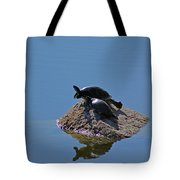 Turtles Tanning Tote Bag