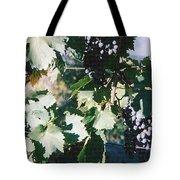Tuscan Grapes Photograph Tote Bag
