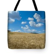 Tuscany Landscape With The Town Of Pienza, Val D'orcia, Italy Tote Bag