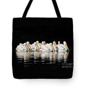 Twelve White Pelicans On A Dark Background. Tote Bag