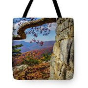 Twenty Minute Cliff Blue Ridge Parkway I Tote Bag