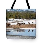 Twice The Elk Tote Bag