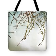 Twigs And Winter Sky Two Tote Bag