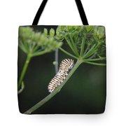Twilight Caterpillar Tote Bag